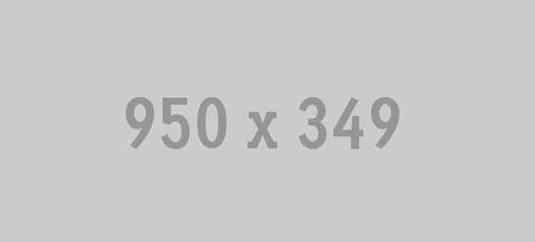 950x349